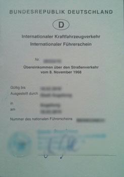 internationaler-führerschein