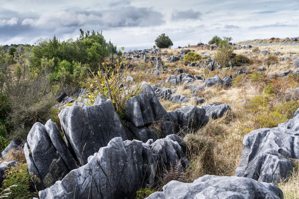 Ngarua Caves-9