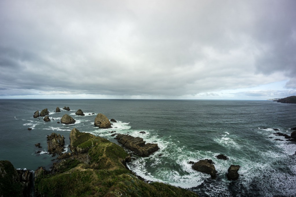 Nugget Point-9