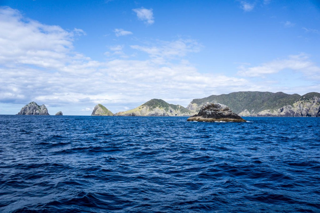 Bay of Islands-4